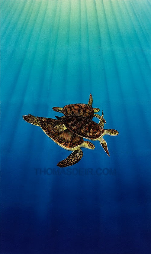 Turtle Trio Art Giclee Prints by Hawaii Artist