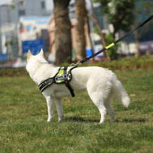 High Quality Dog Harness Comfortable Pet Dog Collars Adjustable