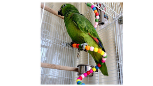 Colorful Swing Bird Toy Parrot Rope Harness Cage Toys Pet Birds Beads Rotating Toy