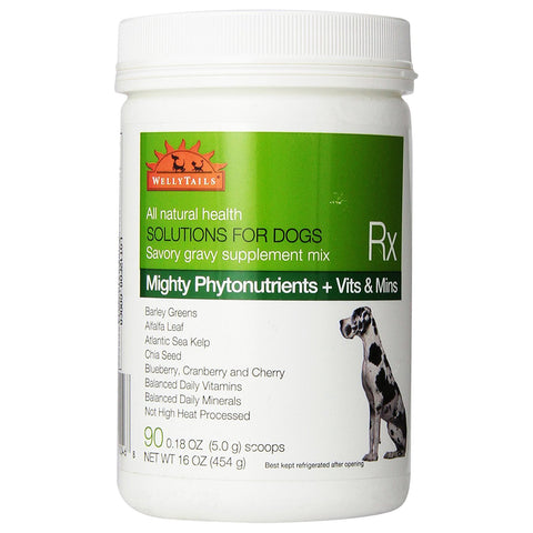 Wellytails - Mighty Green Phytonutrients + Vitamins & Minerals