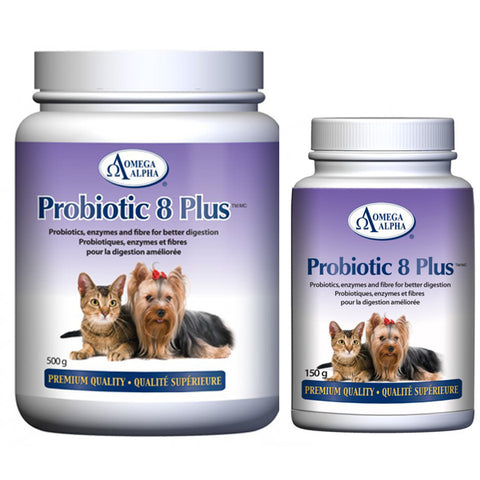 Omega Alpha - Probiotic 8 Plus