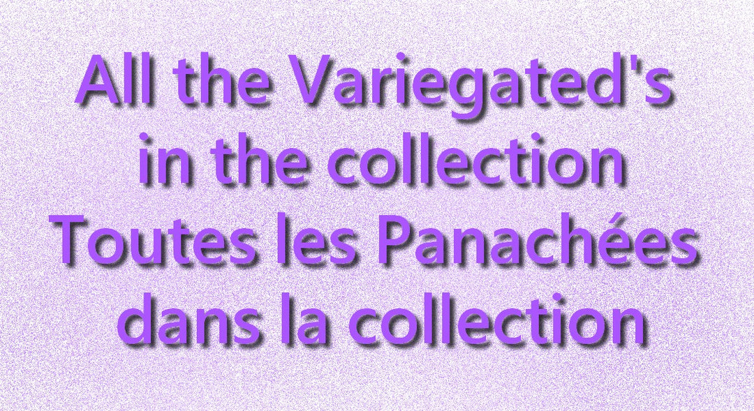 Variegated's the complete collection