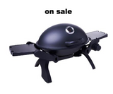 BBQ Warehouse Portable Gas Grill