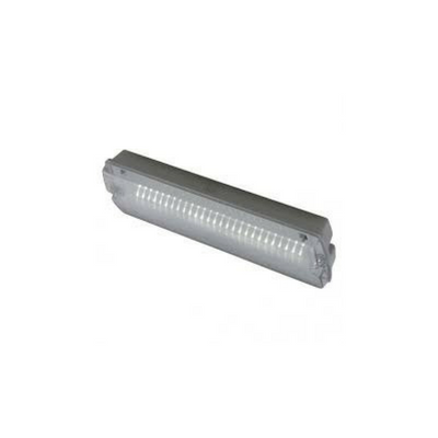 Ansell Guardian LED Bulkhead Maintained / Non-Maintained 3W White