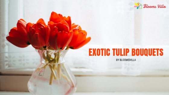 Same Day Flower Delivery in Pune of Exotic Tulip Bouquets