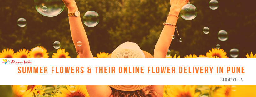 Summer Flowers & Their Online Flower Delivery in Pune
