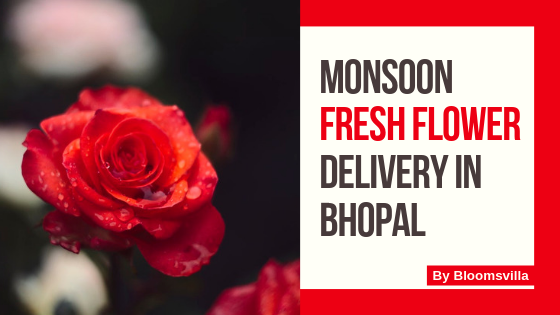 Monsoon Fresh Flower Delivery in Bhopal