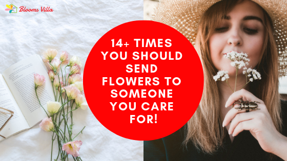 14+ Times you should Send Flowers to Someone You Care For!