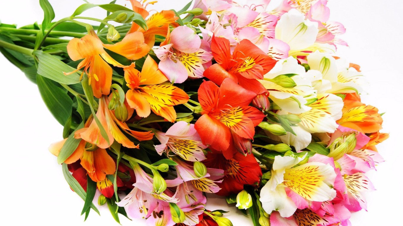Flower Delivery In Gurgaon- Send fresh flowers Using BloomsVilla