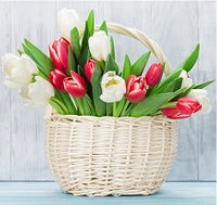 Flower With Basket - from Best Flower Delivery on Category || Red ColorRed Color