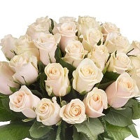 White rose bouquet - from Best Flower Delivery in Subcategory Flowers Roses White Rose