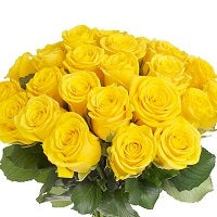 Yellow rose bouquet - Send Flowers to Subcategory Flowers Roses White Rose