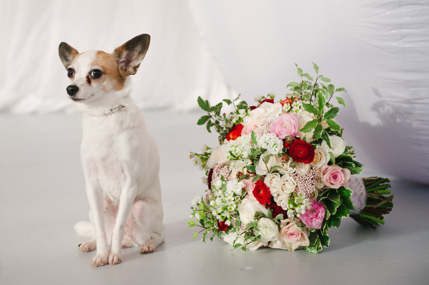 online flower bouquets with pet