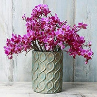 Flower With Vase - Send Flowers to Noida