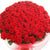 Eternal Love- 100 Red Roses Bouquet- -Product Details: 100 Red roses Bouquet Seasonal Fillers Red Ribbon Bow To express your love wonderfully, we have this one especially designed bouquet of 100 red roses for you to give a surprise that shows the extent of your love. We provide a bouquet of 100 fresh roses. All are combined to express your feeling to your loved ones and make them feel more special. While we always strive to ensure that products are accurately represented in our photographs, from season to season and subject to availability, our florists may be required to substitute one or more flowers for a variety of equal or greater quality, appearance and value