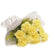 Shining Yellow Carnation Bouquet--A lovely bouquet of 20 yellow carnations A shining yellow carnation bunch to make ones mood cheerful and happy! While we always strive to ensure that products are accurately represented in our photographs, from season to season and subject to availability, our florists may be required to substitute one or more flowers for a variety of equal or greater quality, appearance and value.