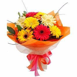 Delightful Gerbera Bouquet - for Online Flower Delivery In India
