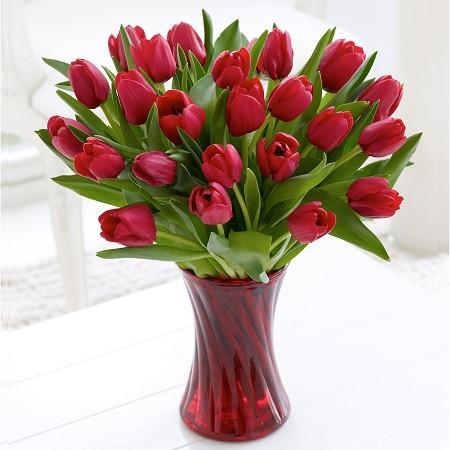 20 Red Tulips In A Glass Vase - from Best Flower Delivery in India