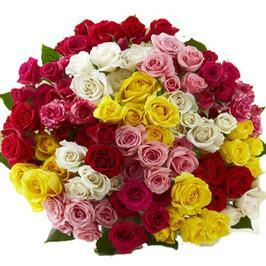 100 mix color roses premium bunch - for Flower Delivery in Occasion Flowers Valentine Flowers