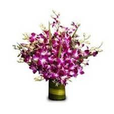 Amazing Orchids Vase - Send Flowers to India