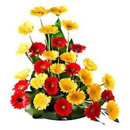 Classic Memories - for Online Flower Delivery In India