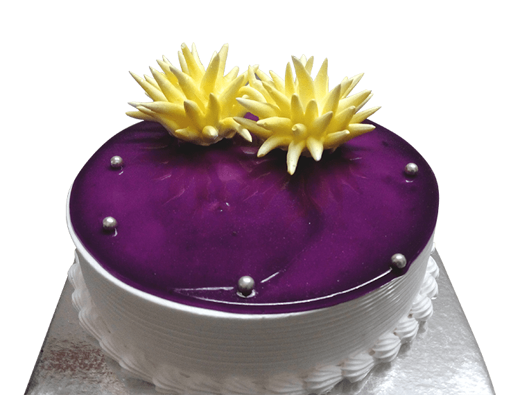Modern Muse Blackberry Cake - for Midnight Flower Delivery in India