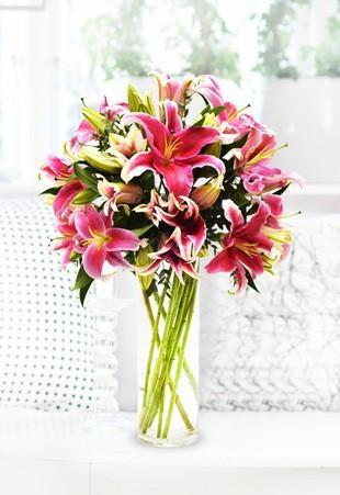 Stargazer Lilies - for Online Flower Delivery In India