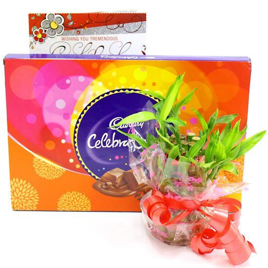 Celebrations and Luck - for Online Flower Delivery In India