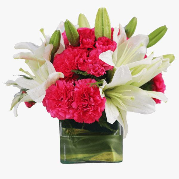 Exotica By Bloomsvilla - for Midnight Flower Delivery in India