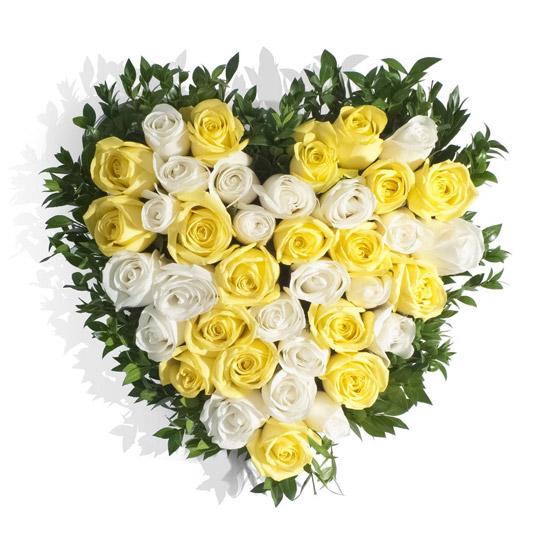 Glory Of Sunshine-beautiful yellow and white roses arrangement - for Midnight Flower Delivery in India