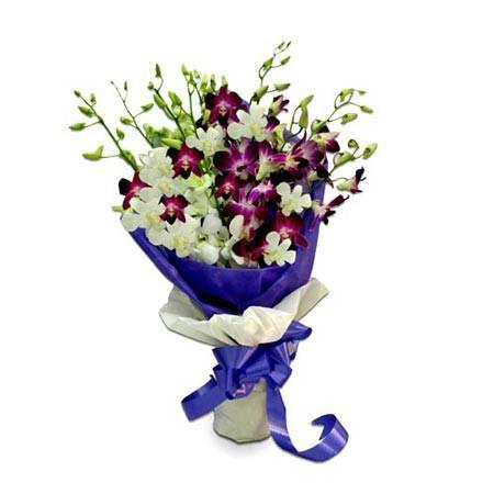 Purple and White Orchids - from Best Flower Delivery in Bhubaneswar