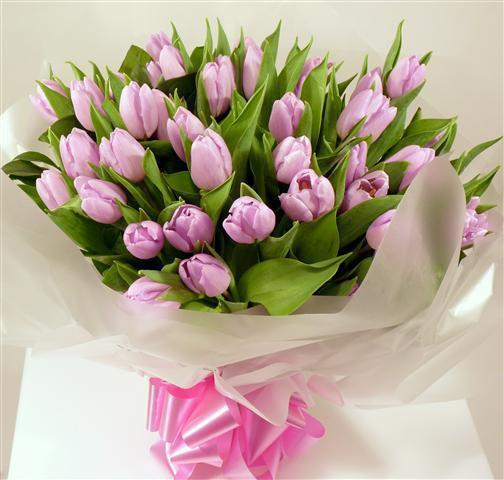 Purple Tulips Bunch - from Best Flower Delivery in India