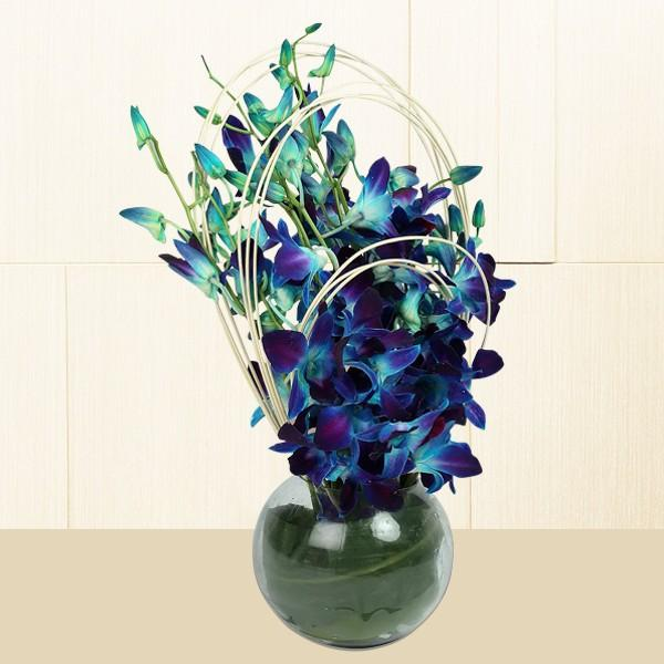 Sprinkle Blue Orchids - for Online Flower Delivery In India