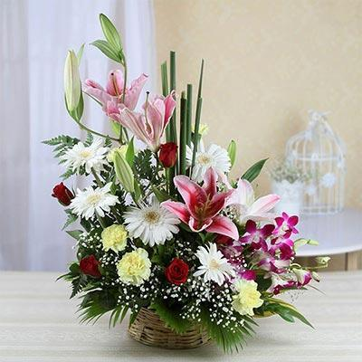 Sweet Scent - for Online Flower Delivery In Category Flowers Orchids