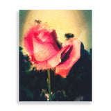 bug on pink rose art print by the reclusive blogger
