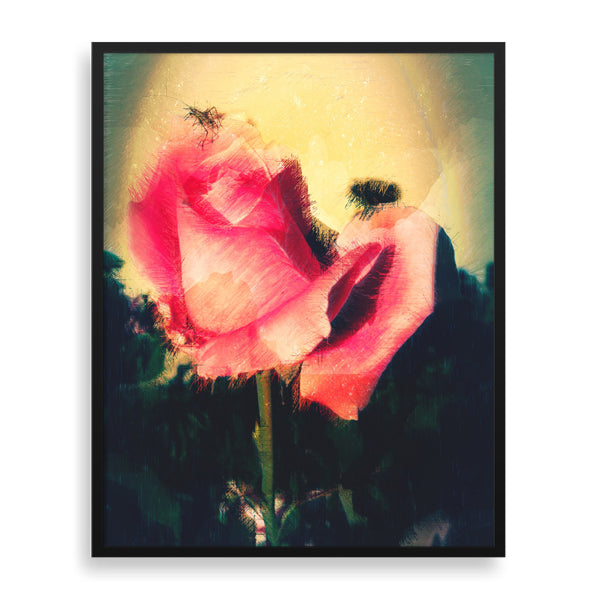 bug on pink rose framed print by african-american artist the reclusive blogger
