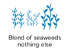 Blend of Brown Seaweeds, nothing else