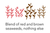 Blend of red and brown seaweeds, nothing else