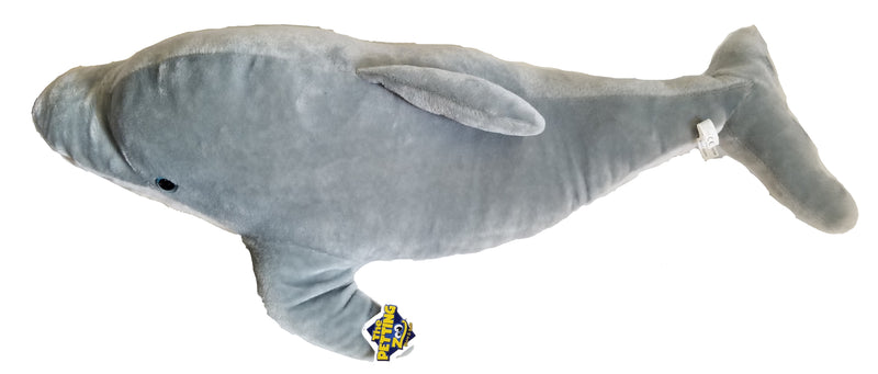 Dolphin Plus Toy