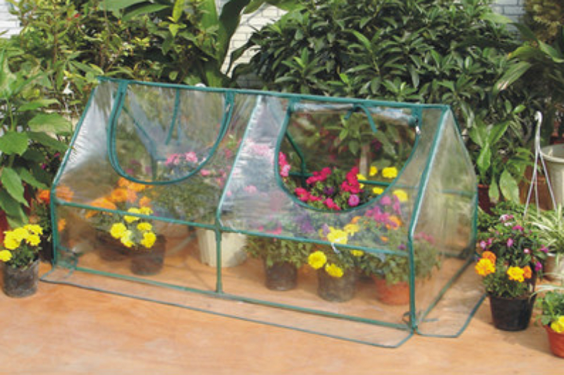 2 Ft. W x 4 Ft. D Cold Frame Greenhouse Waterproof Portable Mini Greenhouse