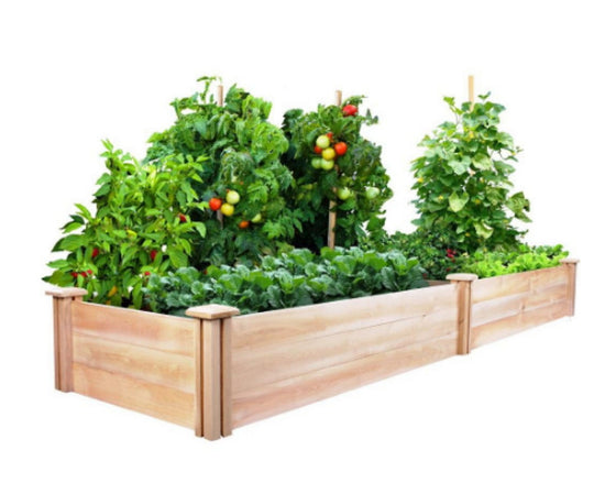 2 ft. x 8 ft. Cedar Wood Raised Garden Bed Stackable Outdoor Planter Kit
