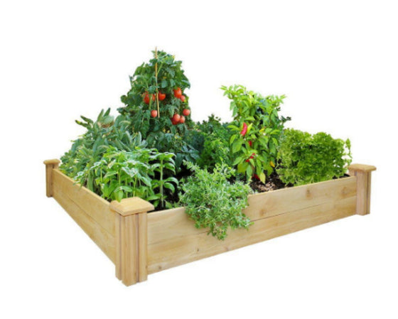 48 in. x 48 In. Cedar Raised Garden Bed Dovetail Planter Kit Expandable Planter
