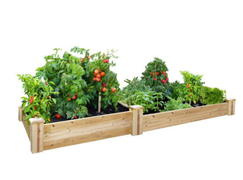48 in. x 96 in. Cedar Raised Garden Bed Two-Tier Vegetable Planter Dovetail