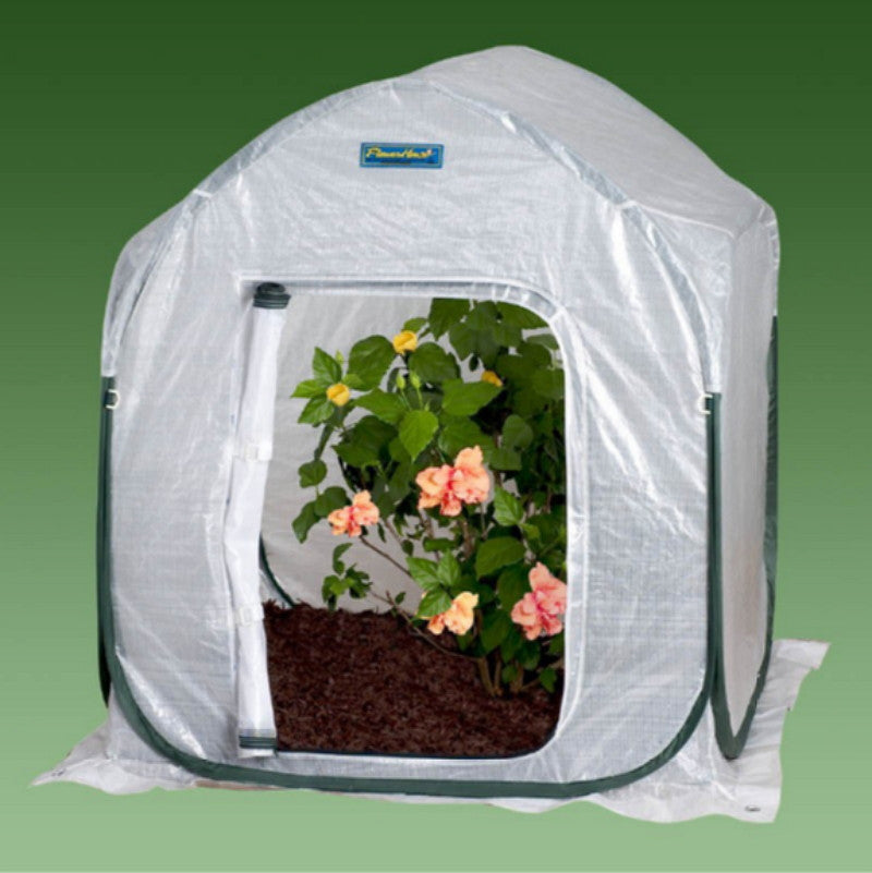 4 Ft. W x 4 Ft. D Polyethylene Mini Greenhouse Foldable Weather Resistant