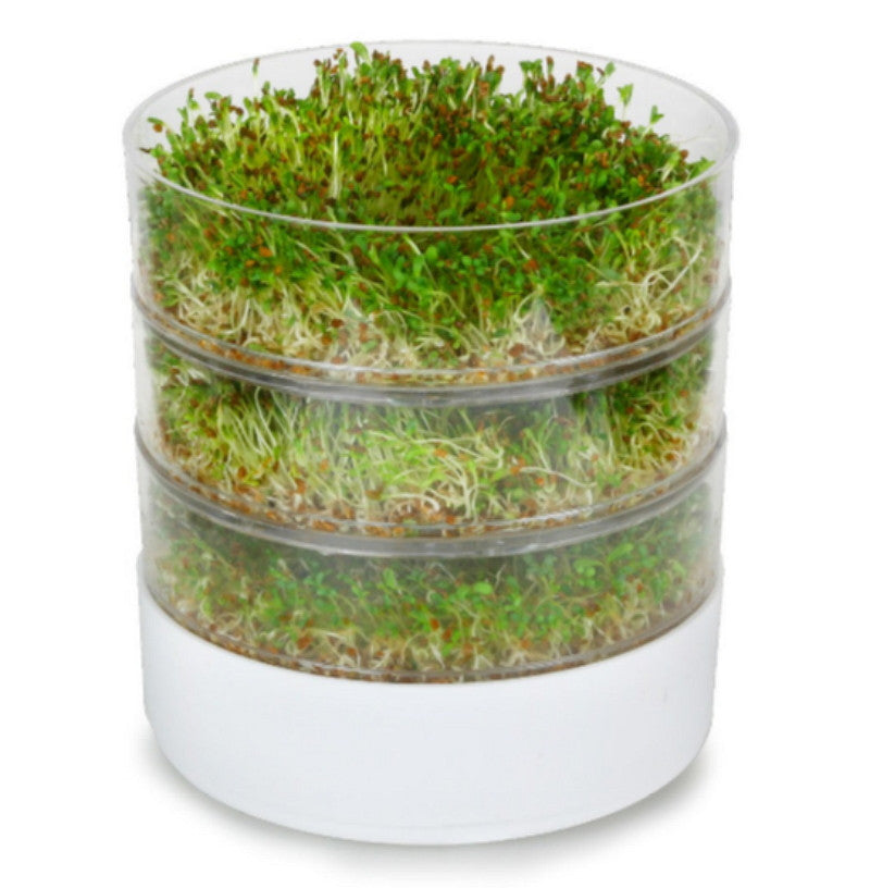 Victorio 4-Tray Seed Sprouter with Alfalfa Seeds Expandable Sturdy White