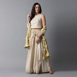 Gold Buta Print Skirt, Gold Striper Print Blouse and Contras Frill Dupatta Set