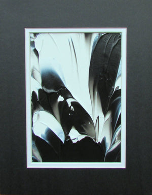 Black and White Feathers Abstract Acrylic Painting