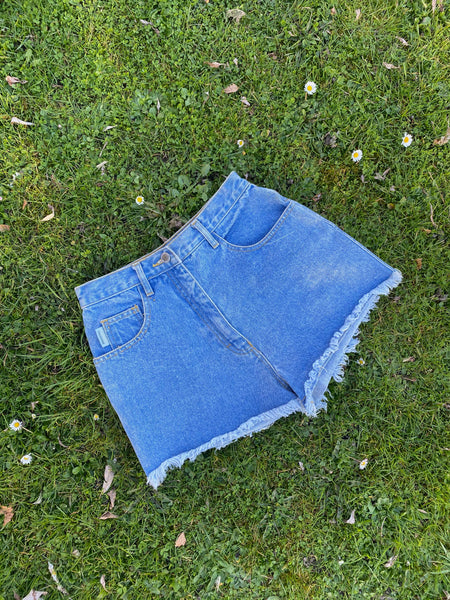 Vintage 90s High Waisted Denim Shorts Blue - W27