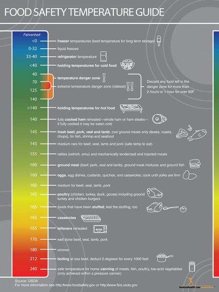 Food Temperature Chart for Food Safety - Mini Poster Handout - Color Handouts - Stacks of 50 - Nutrition Education Store
