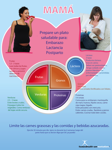 MyPlate for Pregnant and Breastfeeding Moms Poster English Spanish Bilingual 2 in 1 - Nutrition Education Store